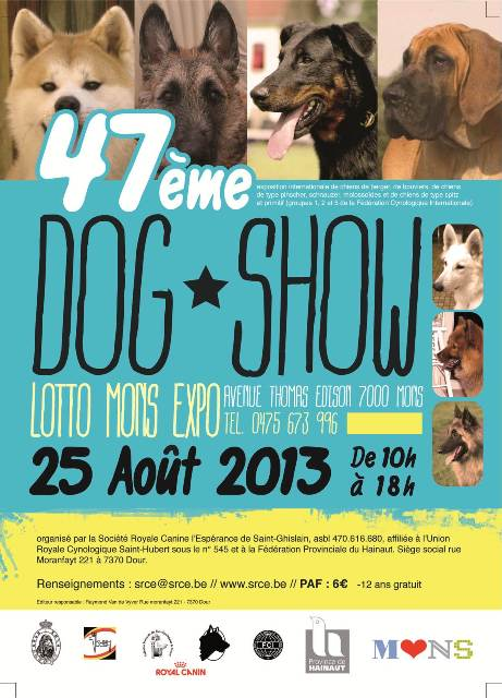 affiche-dogshow2013-medium.jpg