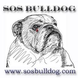SOS Bulldog